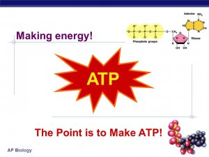 Red Light Therapy and ATP