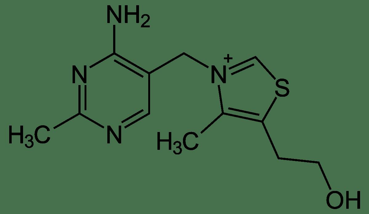 Ray Peat on B1 - Thiamine